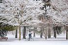 February 26, 2020; Snow on South Quad (Photo by Matt Cashore/University of Notre Dame)