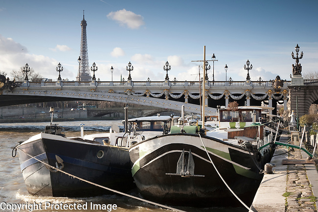 Pont Alexandre III Bridge and the River Seine with the Eiffel Tower in the Background in Paris, France
