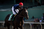 ARCADIA, CA - FEBRUARY 10: Majestic Heat and Flavien Prat at Santa Anita Park on February 10, 2018 in Arcadia, California. (Photo by Alex Evers/Eclipse Sportswire/Getty Images)