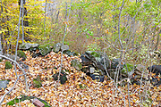 The dwelling site of St George's Hall in the abandoned village of Livermore during the autumn months. This was a logging village in the late 19th and early 20th centuries along the Sawyer River Railroad in Livermore, New Hampshire.
