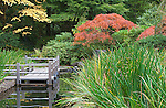 The Zig Zag bridge steps across a Koi pond and Iris plantings at the Portland, Oregon, Japanese Garden.  The Japanese Garden in Portland is a 5.5 acre respit.  Said to be one of the most authentic Japanese Garden's outside of Japan, the rolling terrain and water features symbolize both peace and strength.