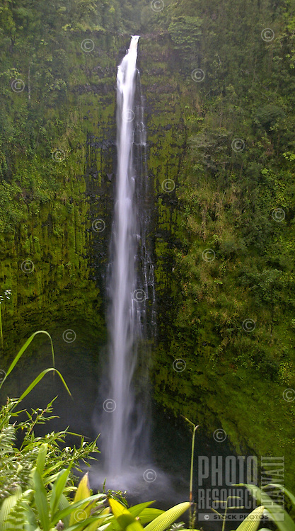 The 440 feet of Akaka Falls on the Big Island rarely disappoints.