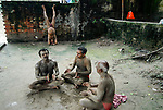 INDIA, Westbengal Calcutta Kolkata, men doing morning Yoga at hooghli river / INDIEN Westbengalen Megacity Kalkutta, Maenner beim Morgen Yoga am Hooghli Fluss