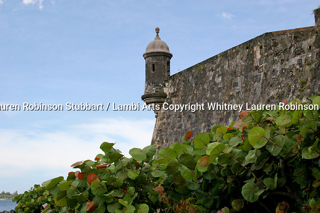 2007 Copyright  Whitney Lauren Robinson Stubbart / Lambi Arts Building and Architecture Photography Puerto Rico 2007,  Garita, fort San Felipe del Morro, Foliage, Ocean, Beaches, landmarks, Ponce Cathedral, Parque de Bombas, Evening on the beach, San Juan, Palm trees on the peninsula, sunsets, Fire house,  Fishing House, San Juan, monument, Orchidaceae, etc.