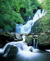 Ireland, County Kerry, near Killarney, Killarney National Park: Torc waterfall | Irland, County Kerry, bei Killarney, Killarney National Park: Torc Wasserfall