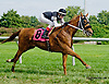 Lovers Quay winning at Delaware Park on 9/3/14