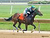 Stormin Coneja winning at Delaware Park on 5/27/15