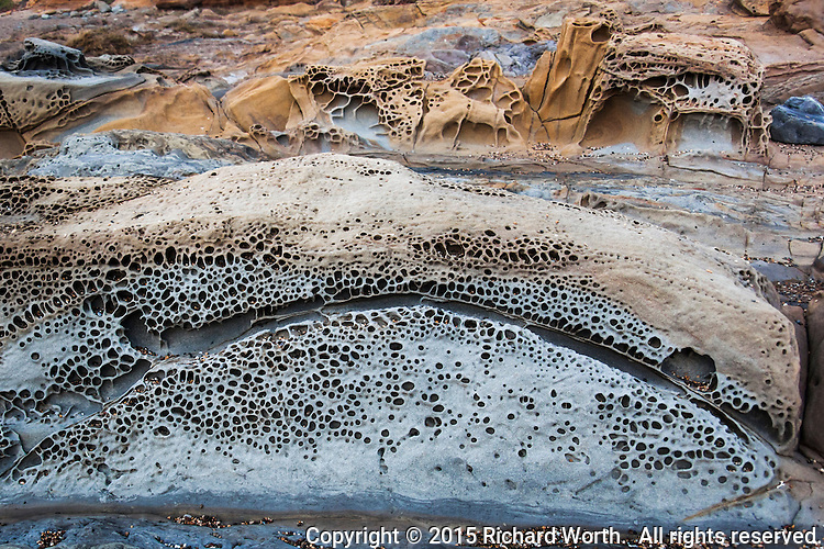 Depending on your imagination, you may or may not see two gray eyes and big frowning mouth in these tafoni formations at Bean Hollow State Beach on the California coast.