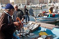 Europe/France/Provence-Alpes-Côte d'Azur/13/Bouches-du-Rhône/Marseille:Marché au poisson sur le Vieux Port  -  Quai des Belges [Non destiné à un usage publicitaire - Not intended for an advertising use]