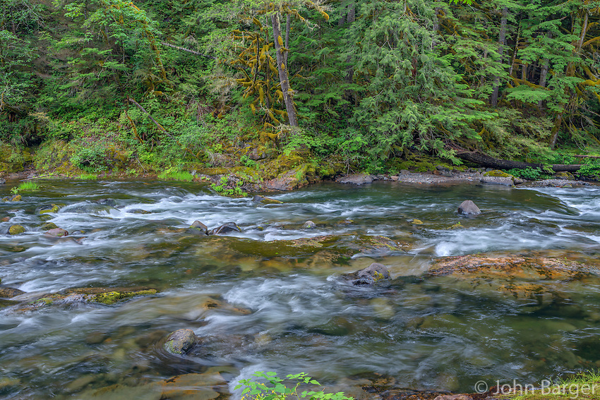 ORCAN_D213 - USA, Oregon, Mount Hood National Forest, Salmon-Huckleberry Wilderness, Salmon River, a federally designated Wild and Scenic River and surrounding forest.