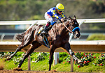 AUG 04: Eight Rings with Drayden Van Dyke breaks his maiden at The Del Mar Thoroughbred Club in Del Mar, California on August 04, 2019. Evers/Eclipse Sportswire/CSM
