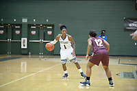 SU women's basketball opened the season at home with a 64-38 loss to the Seagulls at Owings Mills gymnasium on Tuesday night.