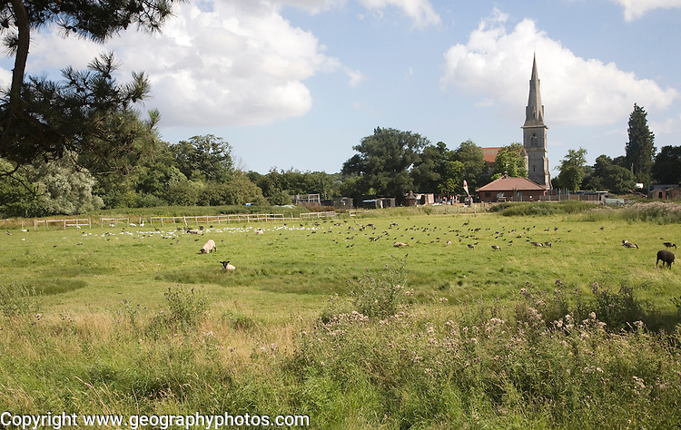 Mistley Place Park tourist attraction and parish church, Mistley, Essex, England