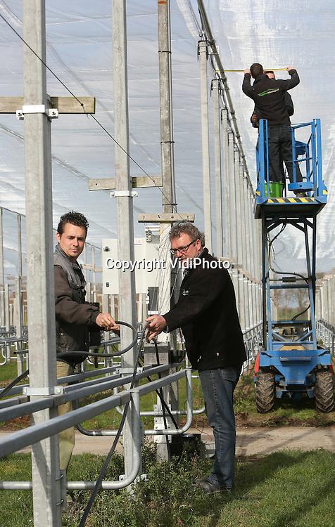 Foto: VidiPhoto<br /> <br /> RANDWIJK &ndash; Bij boomkweker Marien en Jan van Voorthuijsen in het Gelderse Randwijk wordt maandag gewerkt aan het eerste beweegbare hagelnet van Nederland. Van Voorthuijsen is bovendien de eerste boomkweker die een hagelnet plaatst boven zijn sier- en laanbomen. Doel is om schade door storm, hoos- en hagelbuien aan zijn plantmateriaal te voorkomen. De Betuwse kweker is specialist in enten en stekken voor boomkwekers, waardoor er op een relatief kleine ruimte van anderhalf hectare zo&rsquo;n 40.000 enten en stekken in zogenoemde kweekgoten staat. Een fikse hagelbui kan dit in &eacute;&eacute;n klap vernietigen. Het hagelnet, zo sterk als een trekkabel, is gemaakt van fijnmazig geweven kunststofgaas dat grote regendruppels verandert in motregen en hagelstenen tegenhoudt. Binnen tien minuten kan het net op zonne-energie, zich automatisch openen of sluiten. Volgens Van Voorthuijsen worden de weerstomstandigheden in Nederland steeds extremer en komen in het gebied tussen de grote rivieren -waar zijn bedrijf zich bevindt- relatief vaak flinke regen- en hagelbuien voor. Het is te kostbaar om hiervoor een verzekering af te sluiten. Samen met leverancier Van Nifterik Holland BV uit Ede/Kesteren wordt daarom het eerste beweegbare hagelnet gelanceerd als pilotproject voor andere kwekers en (fruit)telers. Het net wordt geplaatst door Hagelnet Montage uit Ederveen. Het besturingssysteem  is van Alumat Zeeman uit Maasdijk.