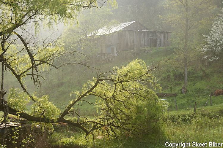 Great Smokey homeplace hideaway