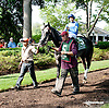 Bryan's Jewel before The Delaware Handicap (gr 1) at Delaware Park on 7/12/14