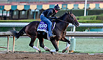 October 28, 2019 : Breeders' Cup Dirt Mile entrant Omaha Beach, trained by Richard E. Mandella, exercises in preparation for the Breeders' Cup World Championships at Santa Anita Park in Arcadia, California on October 28, 2019. Scott Serio/Eclipse Sportswire/Breeders' Cup/CSM