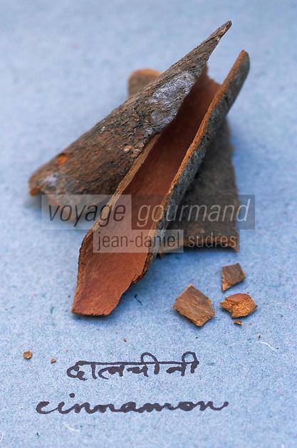 Asie/Inde/Maharashtra/Bombay : Les épices dans la cuisine indienne - Ecorce de cannelle