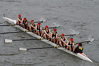 Crew: 252 Lady Eleanor Holles Boat Club D<br /> <br /> Women's Head of the River (WeHoRR) 2017<br /> <br /> To purchase this photo, or to see pricing information for Prints and Downloads, click the blue 'Add to Cart' button at the top-right of the page.