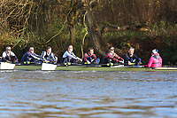 Crew: 34   Op MasC 8+   Upper Thames Rowing Club   UTC-SHIMMIN<br /> <br /> Wallingford Head 2017<br /> <br /> To purchase this photo, or to see pricing information for Prints and Downloads, click the blue 'Add to Cart' button at the top-right of the page.