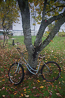 Old Rusted Bicycle, Russell Island, Gulf Islands National Park Reserve, British Columbia, Canada