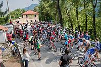 overall contenders Thibaut Pinot (FRA/FDJ), Bob Jungels (LUX/Quick-Step Floors), Bauke Mollema (NED/Trek-Segafredo) & Adam Yates (GBR/Orica-Scott) up the Foza climb (1086m)<br /> <br /> Stage 20: Pordenone › Asiago (190km)<br /> 100th Giro d'Italia 2017