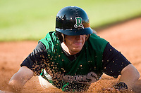 Dayton Dragons 2007
