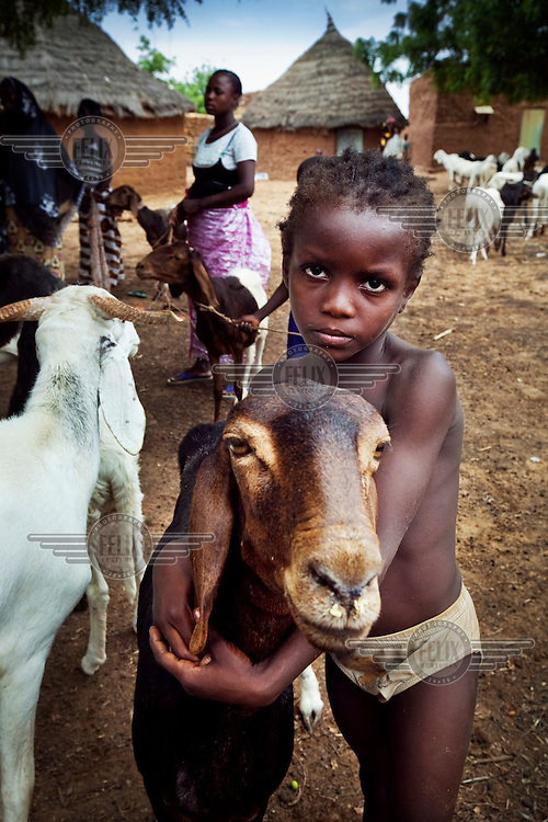 A girl brings her goat to be vaccinated by the local veterinarian.