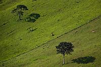 Paisagem rural | Countryside