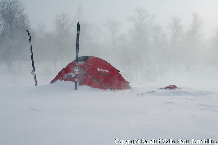 Telt i vind og snødrev ---- Tent in wind and snow