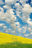 Old windmill. The Palouse near Colfax, Washington