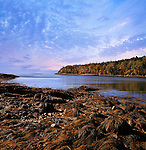 Low Tide At The Inlet, Acadia National Park, Maine, USA