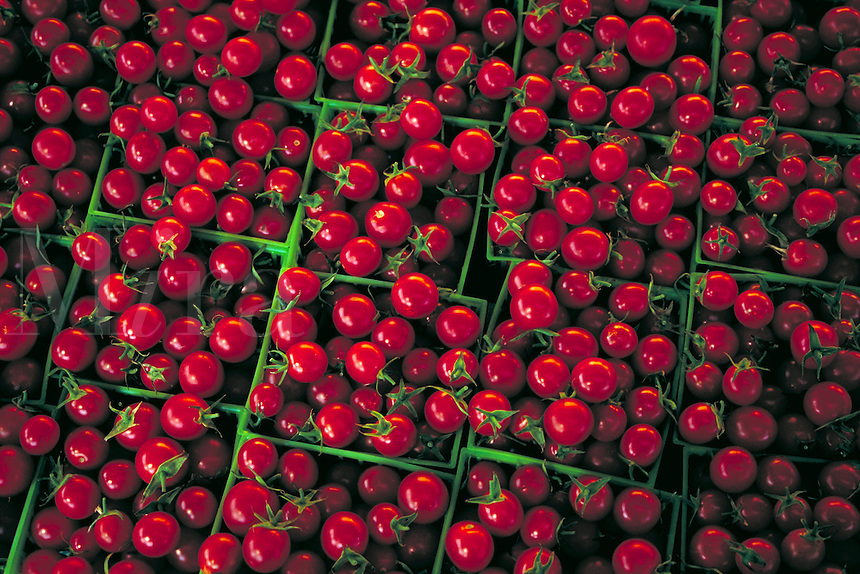 Large piles of bright red cherry tomatoes in green plastic baskets. crimson, bright color, red and green, vegetables, fruit, garden, fresh, tasty, flavorful, tomato, summer, agriculture, farming, produce.