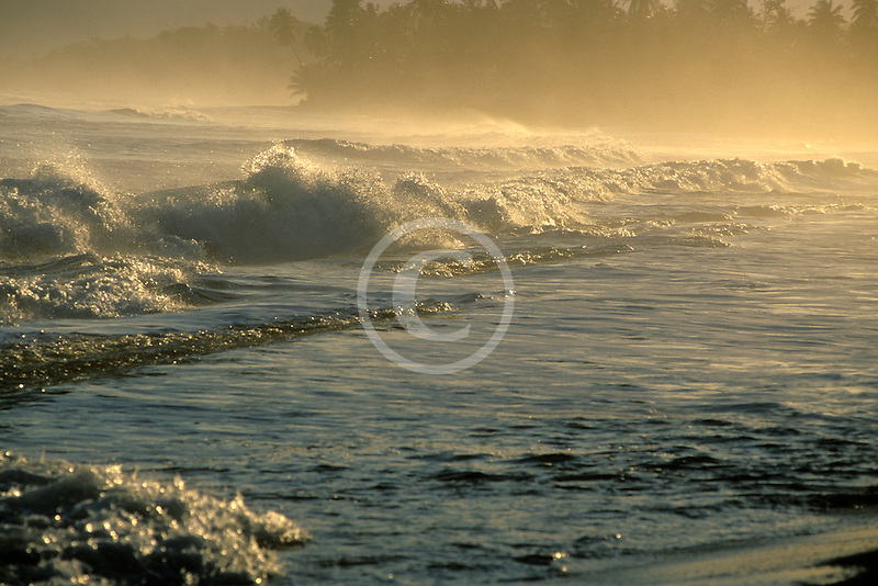 Puerto Rico, Isabela, Morning light on beach