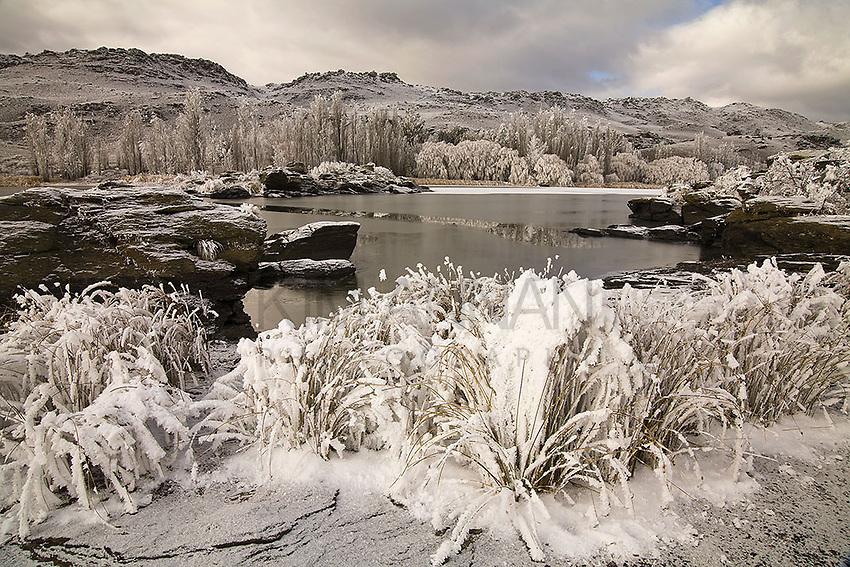 Hoar Frost, Butchers Dam, Alexandra, Central Otago