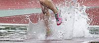 Hindernislauf - Sprung in den Wassergraben. Foto: Jan Kaefer / aif