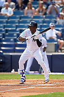 New York Yankees shortstop Didi Gregorius (18) squares to bunt during a Spring Training game against the Detroit Tigers on March 2, 2016 at George M. Steinbrenner Field in Tampa, Florida.  New York defeated Detroit 10-9.  (Mike Janes/Four Seam Images)