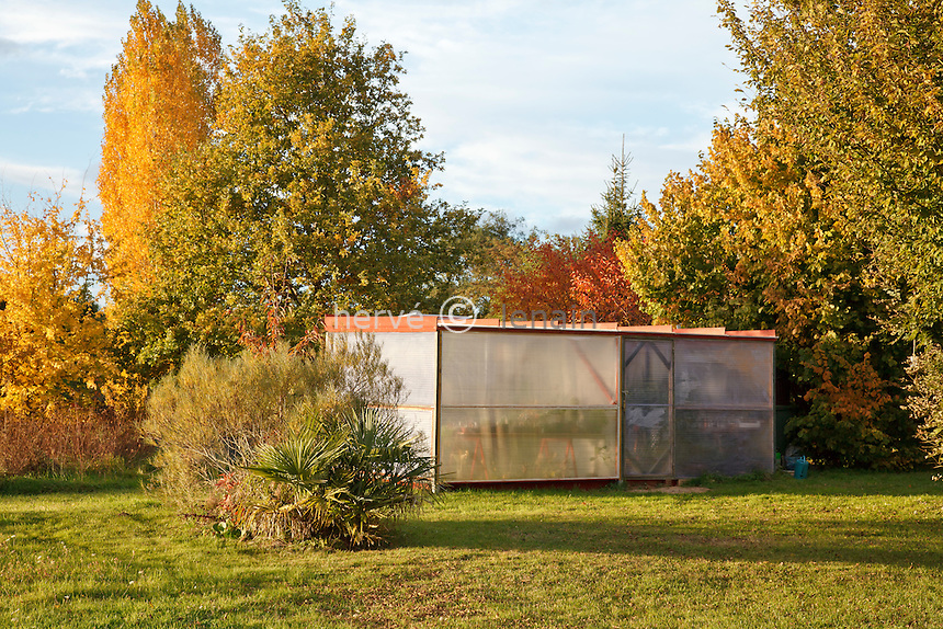 serre en automne // greenhouse in autumn