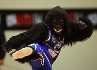 The Saints' gorilla mascot entertains the crowd during a break during the NBL Semifinal basketball match between the Wellington Saints and Nelson Giants at TSB Bank Arena, Wellington, New Zealand on Thursday, 12 June 2008. Photo: Dave Lintott / lintottphoto.co.nz