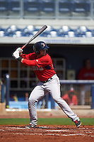 GCL Red Sox outfielder Trent Kemp (43) at bat during the first game of a doubleheader against the GCL Rays on August 4, 2015 at Charlotte Sports Park in Port Charlotte, Florida.  GCL Red Sox defeated the GCL Rays 10-2.  (Mike Janes/Four Seam Images)