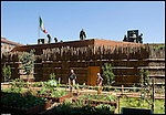 I giardini orti medioevali di Palazzo Madama