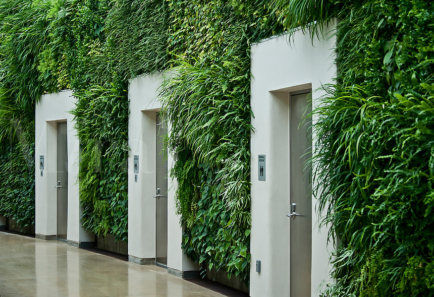 Green wall in East Conservatory, Longwood Gardens, Kennet Square, Pennsylvania
