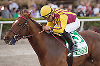 HALLANDALE BEACH, FL - FEBRUARY 04: Jockey Joel Rosario and Irish War Cry dominate the field in the Holy Bull Stakes (G2) at Gulfstream Park. (Photo by Arron Haggart/Eclipse Sportswire/Getty Images)