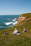 California wildflower travel: Picnic at Chimney Rock at Point Reyes.Photo copyright Lee Foster.  Photo # cawild102568