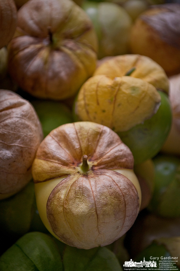 Tomatillo for sale at a farmers market.