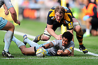 Ken Pisi of Northampton Saints presents the ball after being tackled to ground. Aviva Premiership match, between Wasps and Northampton Saints on April 3, 2016 at the Ricoh Arena in Coventry, England. Photo by: Patrick Khachfe / JMP