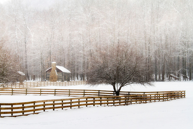 A quaint log cabin and long fence are a nice compliment to the beautiful trees, heavy with snow.<br /> <br /> Available sizes:<br /> 11&quot; x 17&quot; print<br /> See Pricing page for more information. Also available as a mousepad or greeting cards.