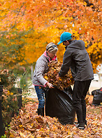 NWA Democrat-Gazette/BEN GOFF @NWABENGOFF<br /> Kelli Courtney and son Jack Courtney of Rogers rake up leaves Saturday, Nov. 3, 2018, at Nicole's House in Rogers. The Courtney family and friends from Lewisville, Texas were volunteering to do fall yardwork at the transitional living facility for women recovering from drug and alcohol addiction.