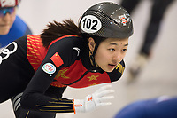 1st February 2019, Dresden, Saxony, Germany; World Short Track Speed Skating; 500 meters women in the EnergieVerbund Arena. Wang Xiran from China runs in a bend.