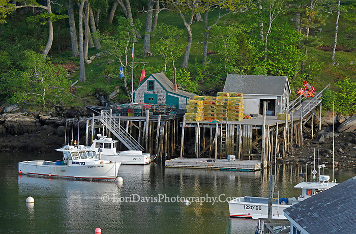 The wharf in New Harbor, Maine